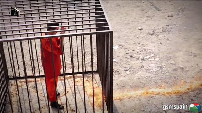 El estado sionista-terrorista de Israel, asesina a un millitar español en Siria